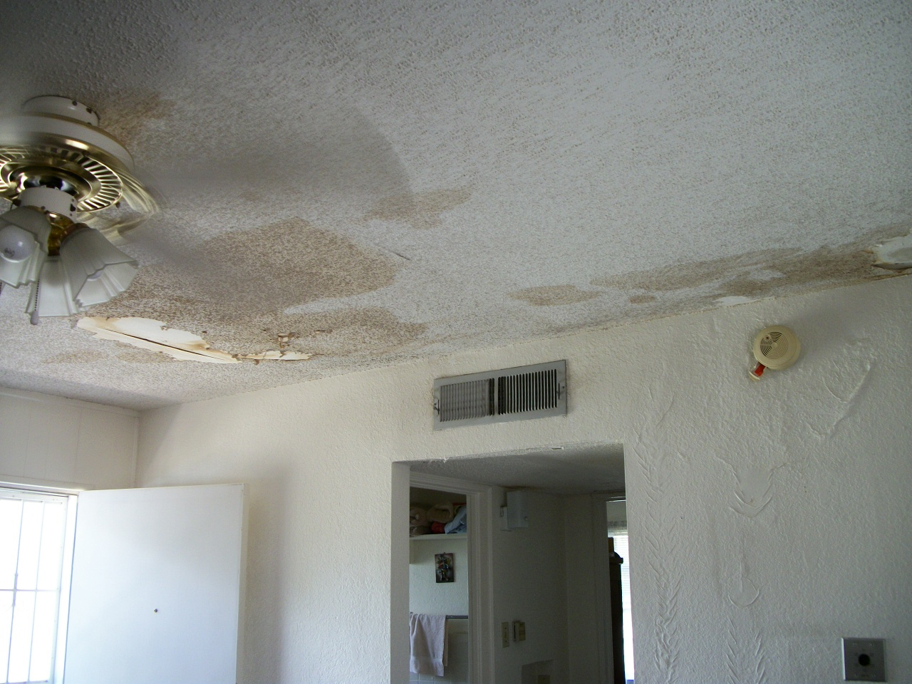 Water damage from a roof leak could lead to mold in your home
